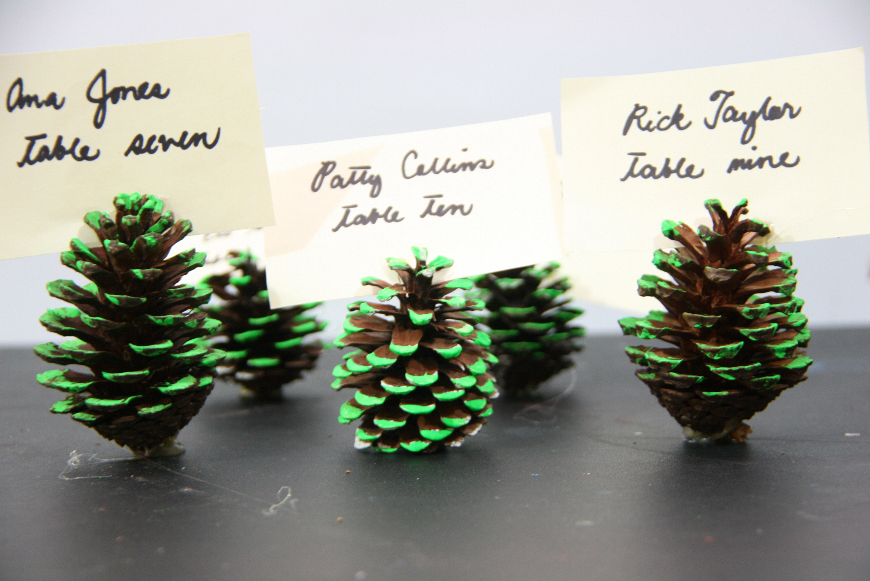 4 Ways To Make A Neon Pine Cone Place Card Holder WikiHow