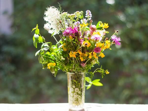 make garden with native