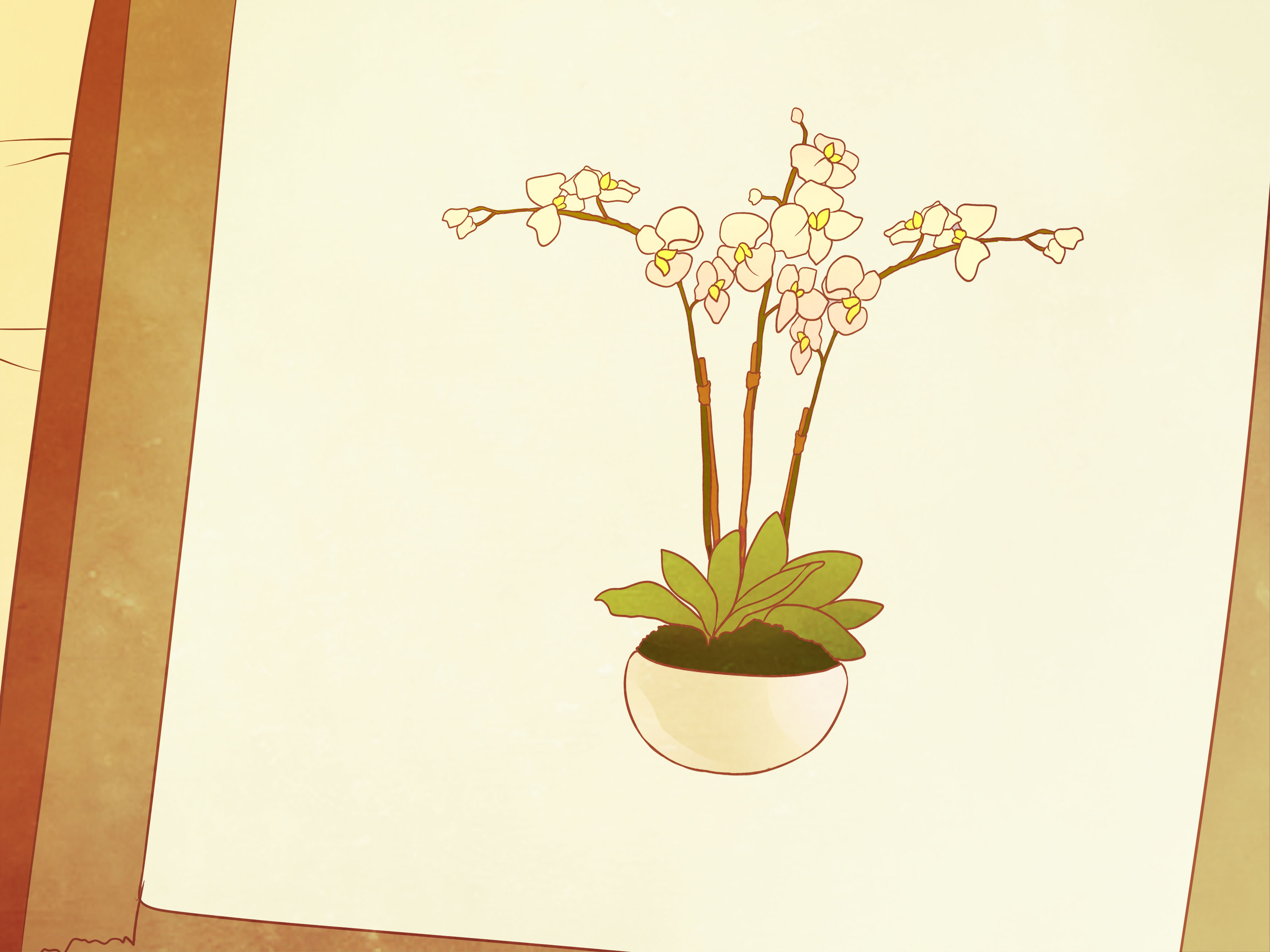 How to Draw Orchids 11 Steps with Pictures  wikiHow