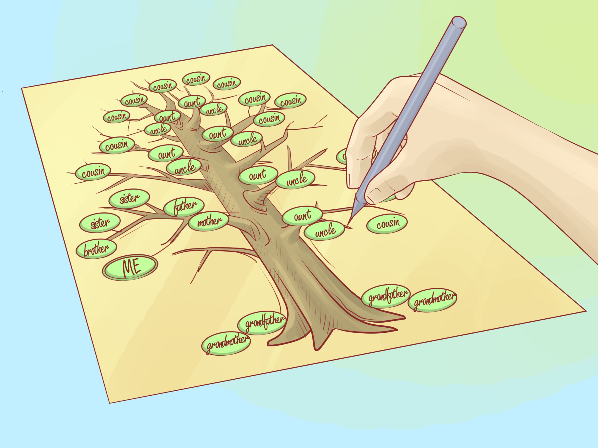 hight resolution of how to draw a family tree
