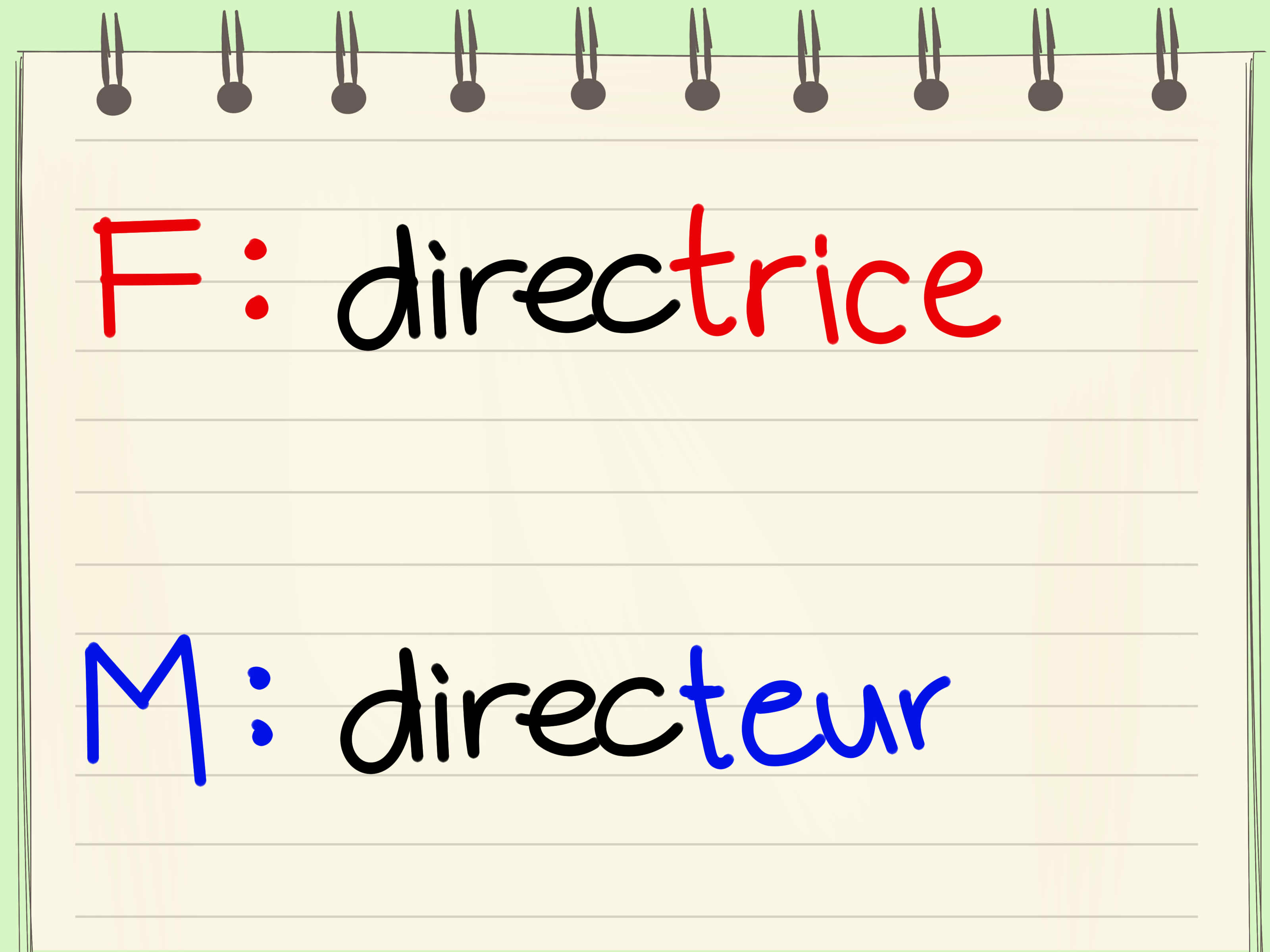 4 Ways To Change Masculine Nouns To Feminine Nouns In French