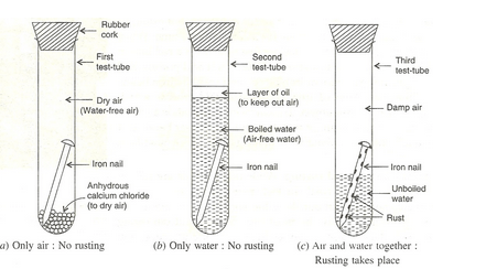 science diagrams for class 8 smiths voltmeter wiring diagram how to prove that rusting takes place in moist air: 5 steps
