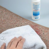 How to Remove Blood Stains from Carpet: 15 Steps (with