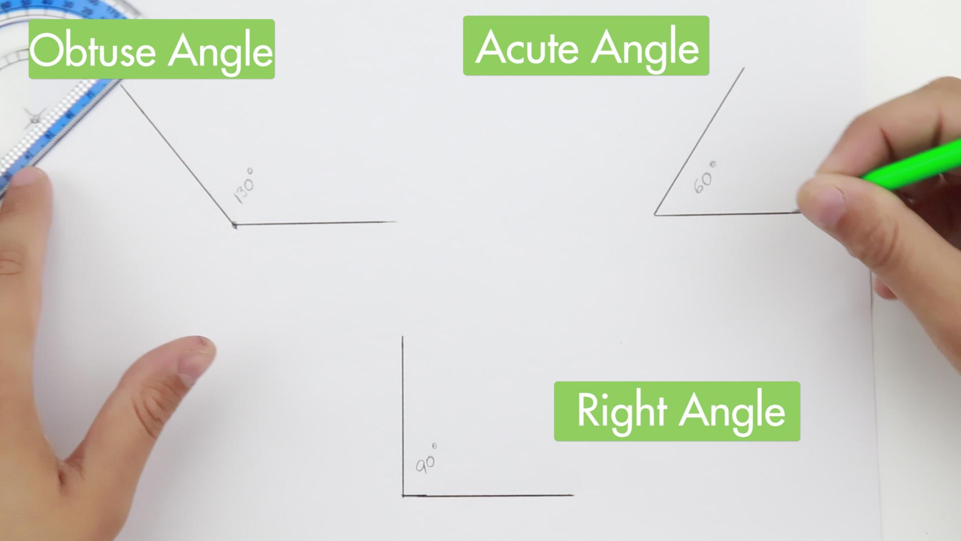 Measuring Angles Protractor Worksheet