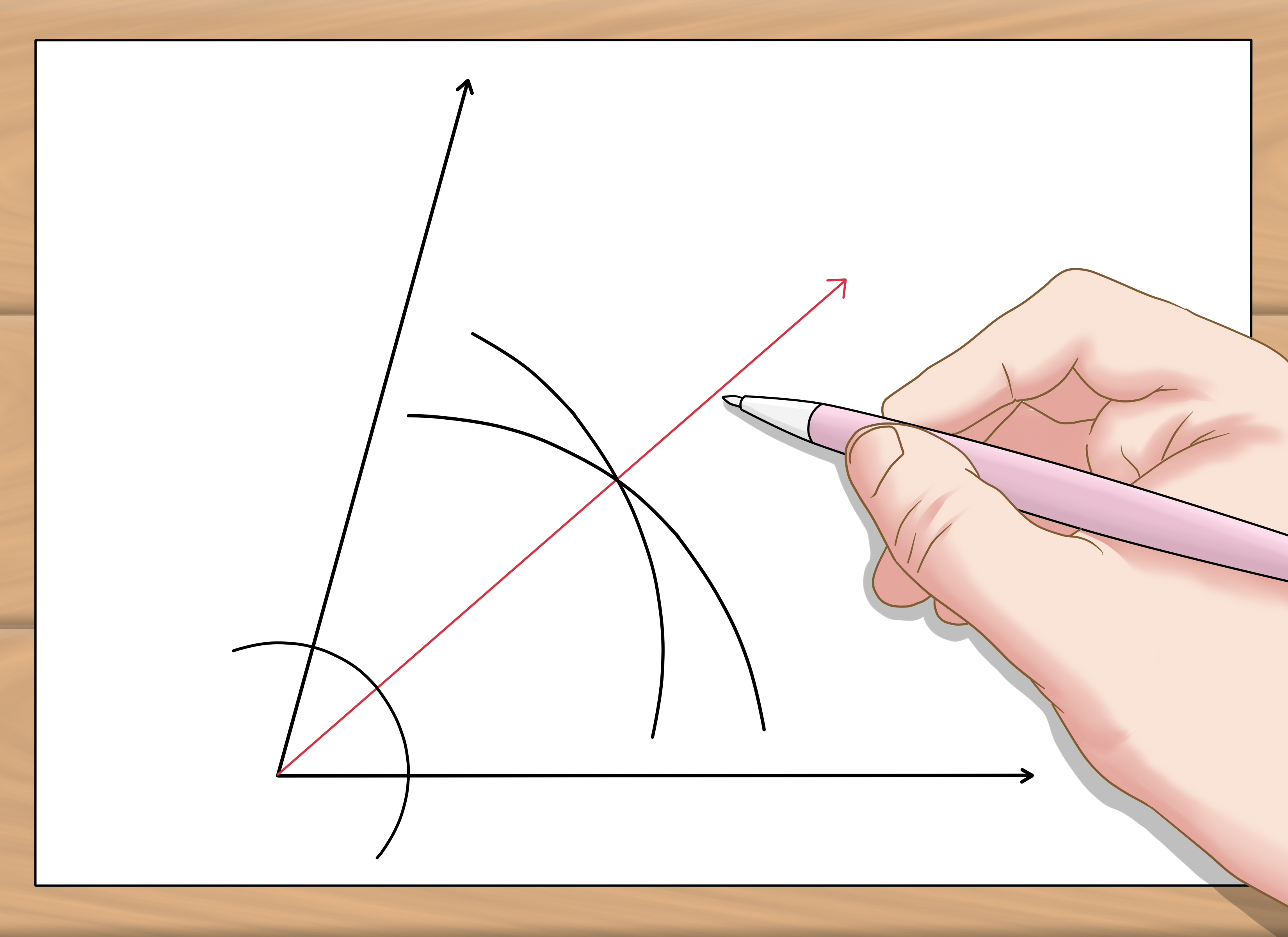 how to construct a bisector of a given