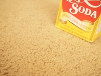 How To Remove Vomit From Carpet Vomit Stain Removal ...