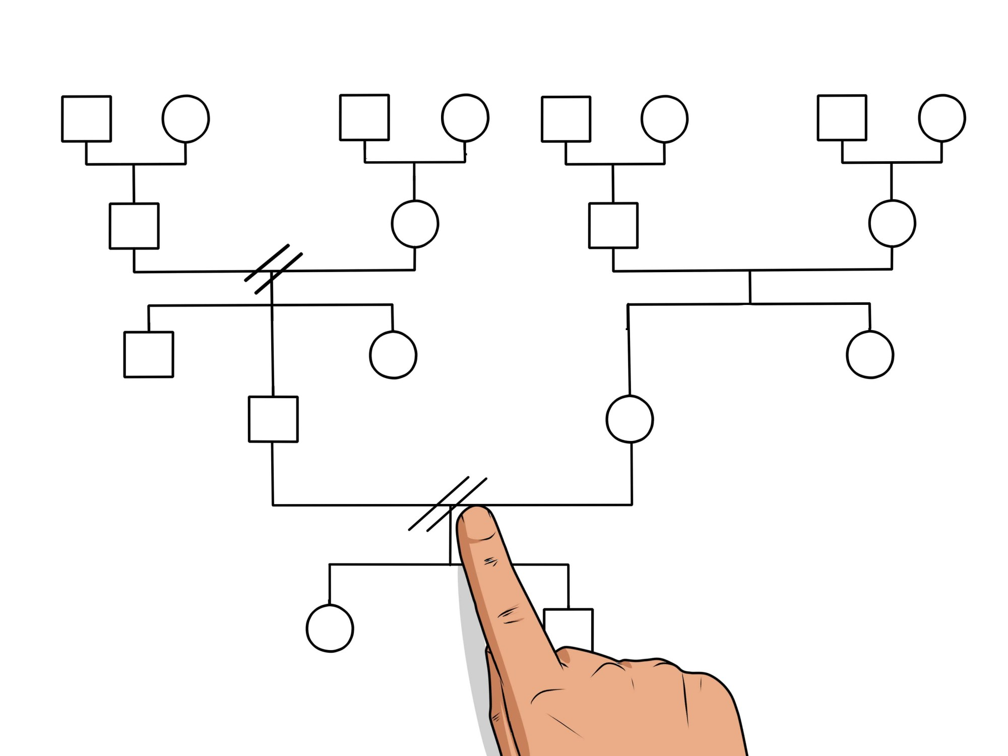 hight resolution of how to make a genogram