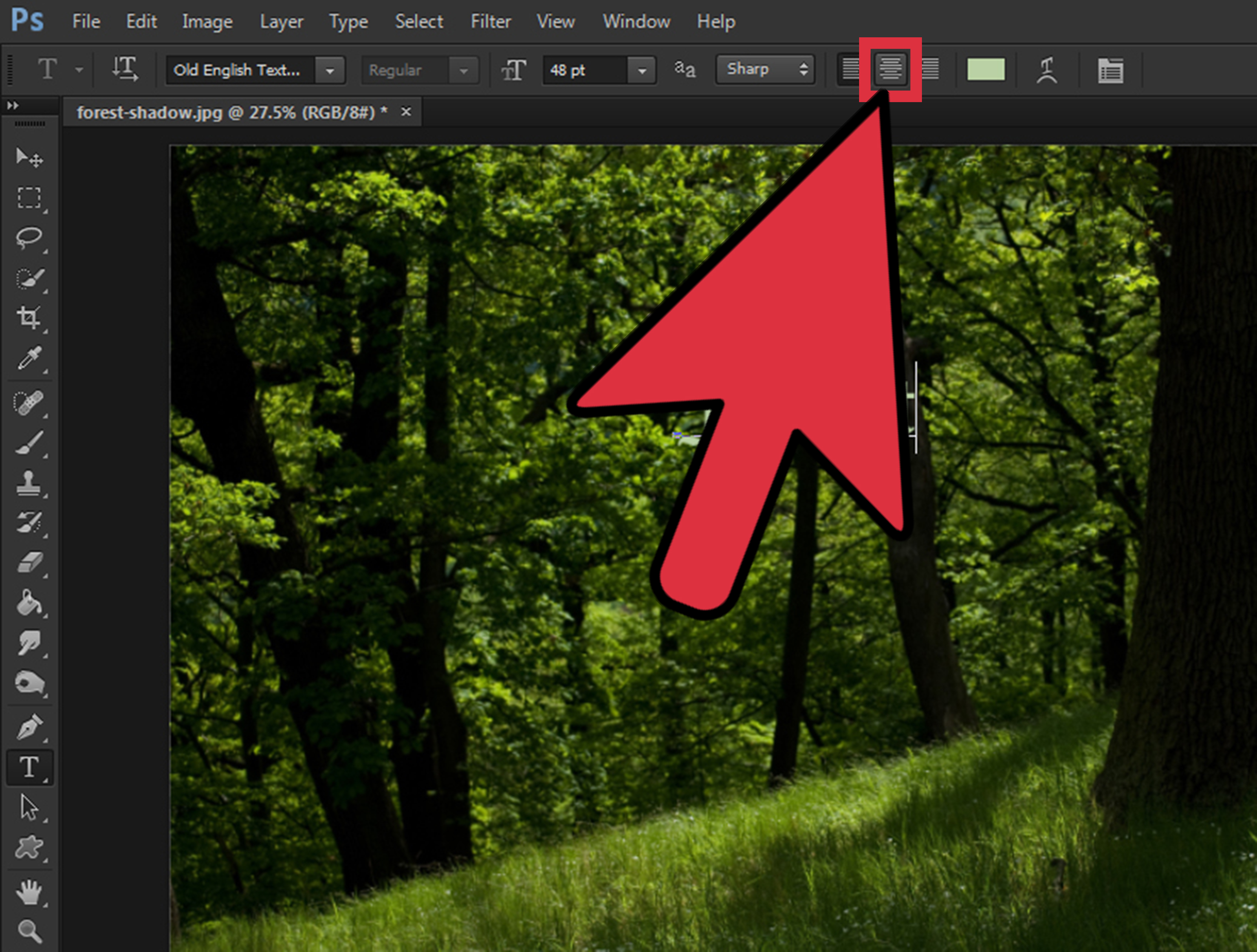 How To Center Text In Photoshop 9 Steps With Pictures