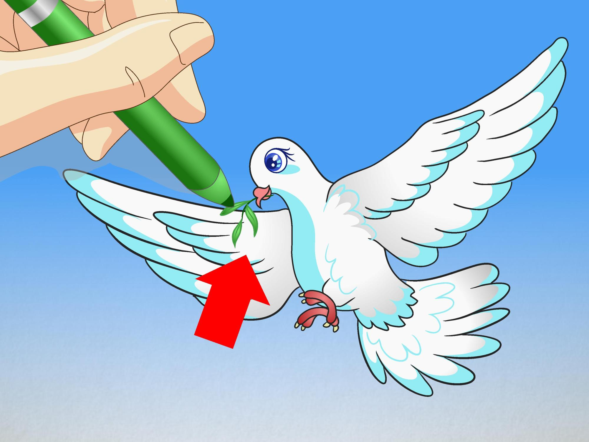 hight resolution of how to draw a dove