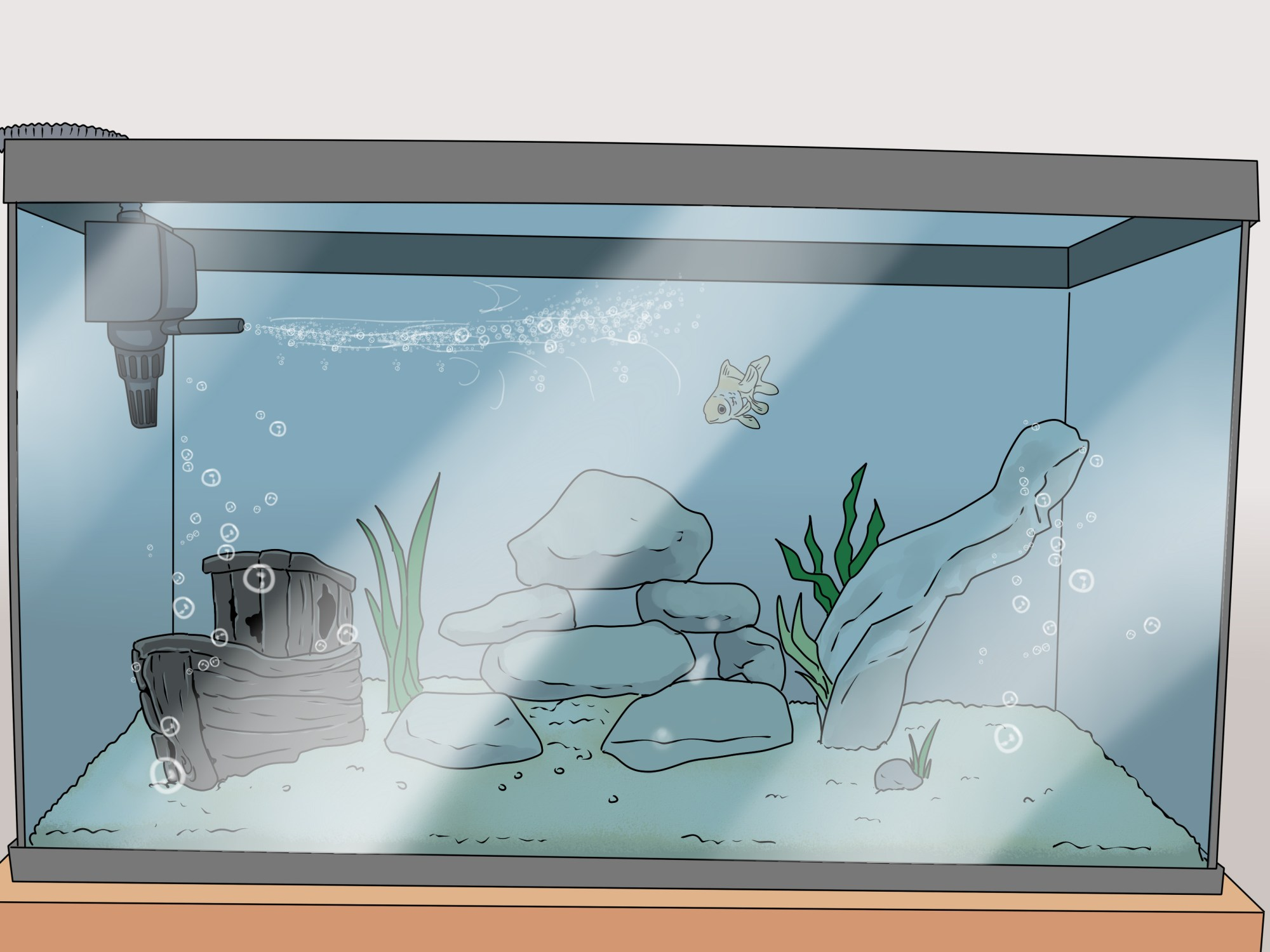 hight resolution of how to set up a healthy goldfish aquarium