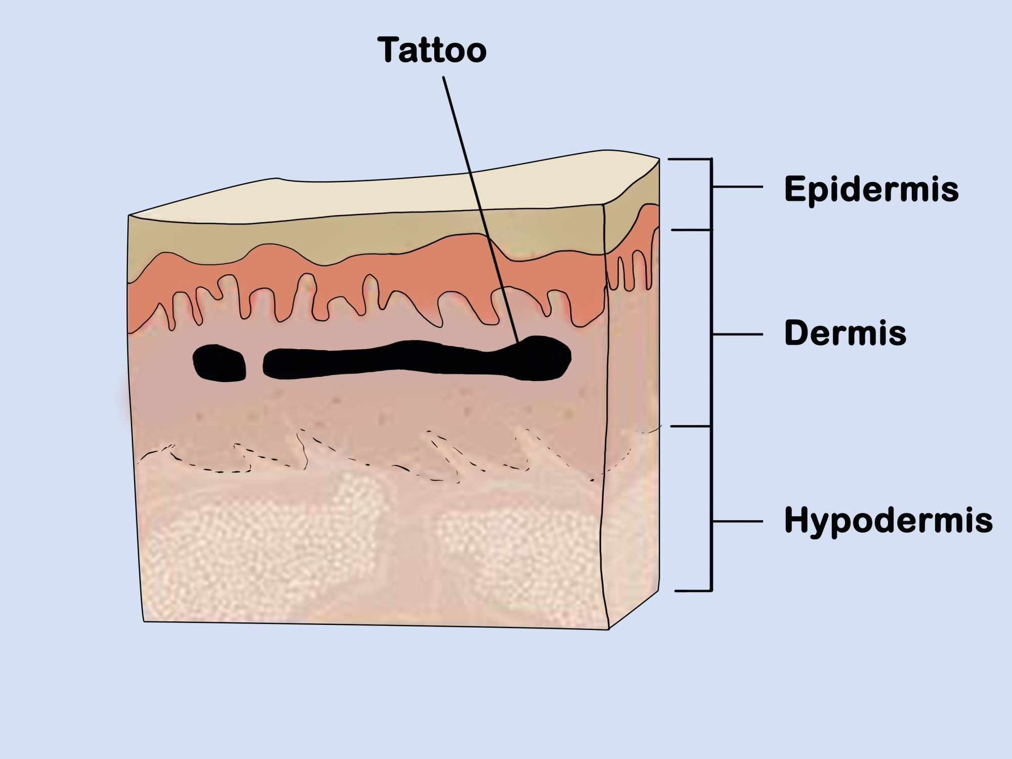 hight resolution of how to practice tattooing