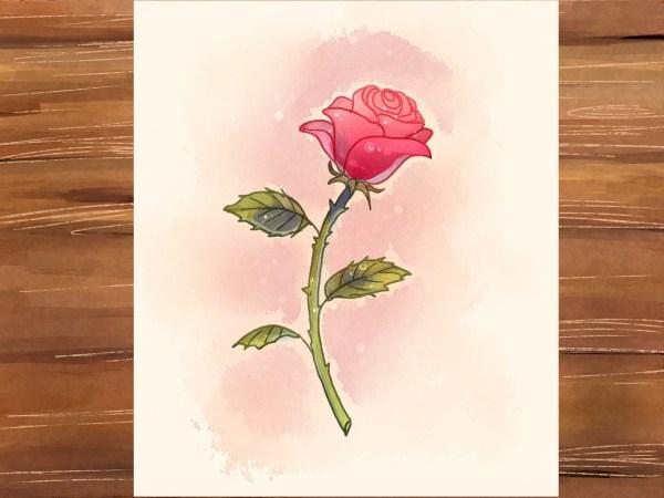 3 Ways Draw Rose - Wikihow