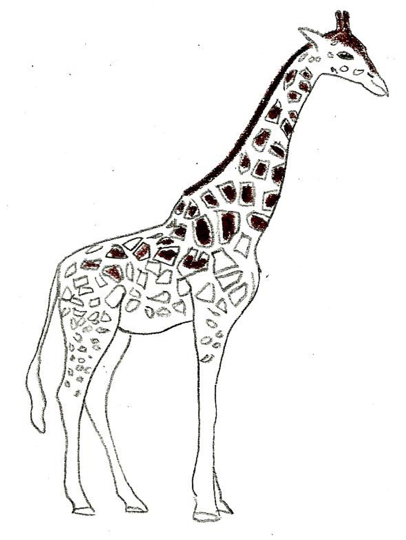 Comment dessiner une girafe: 8 étapes (avec des photos)