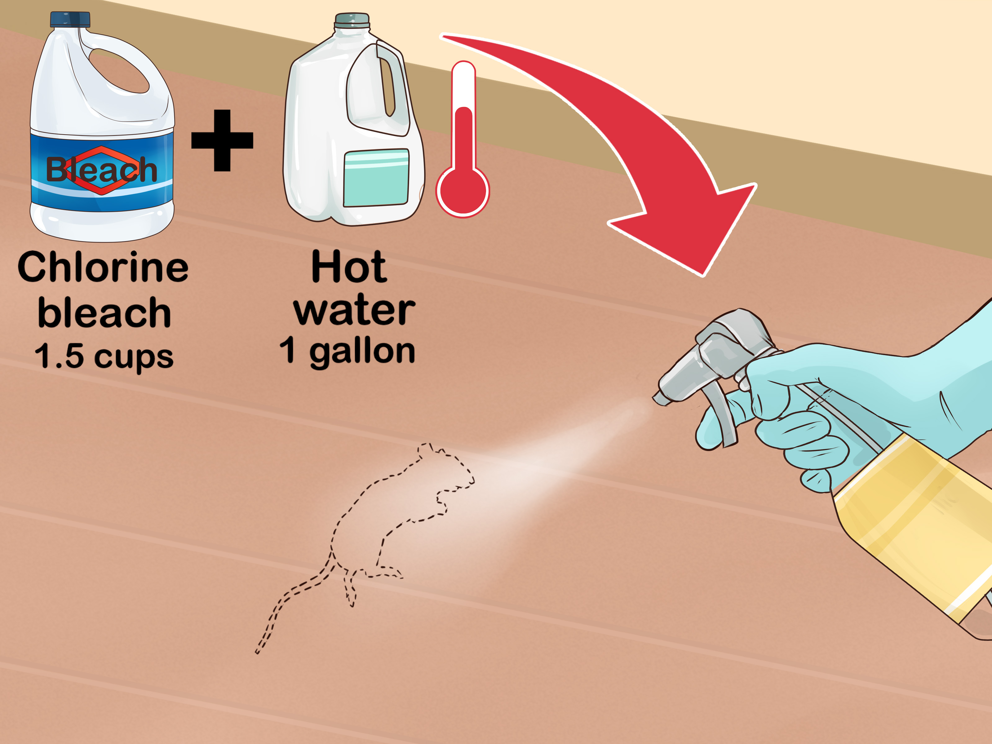 How to Clean Rat Droppings: 14 Steps (with Pictures) - wikiHow