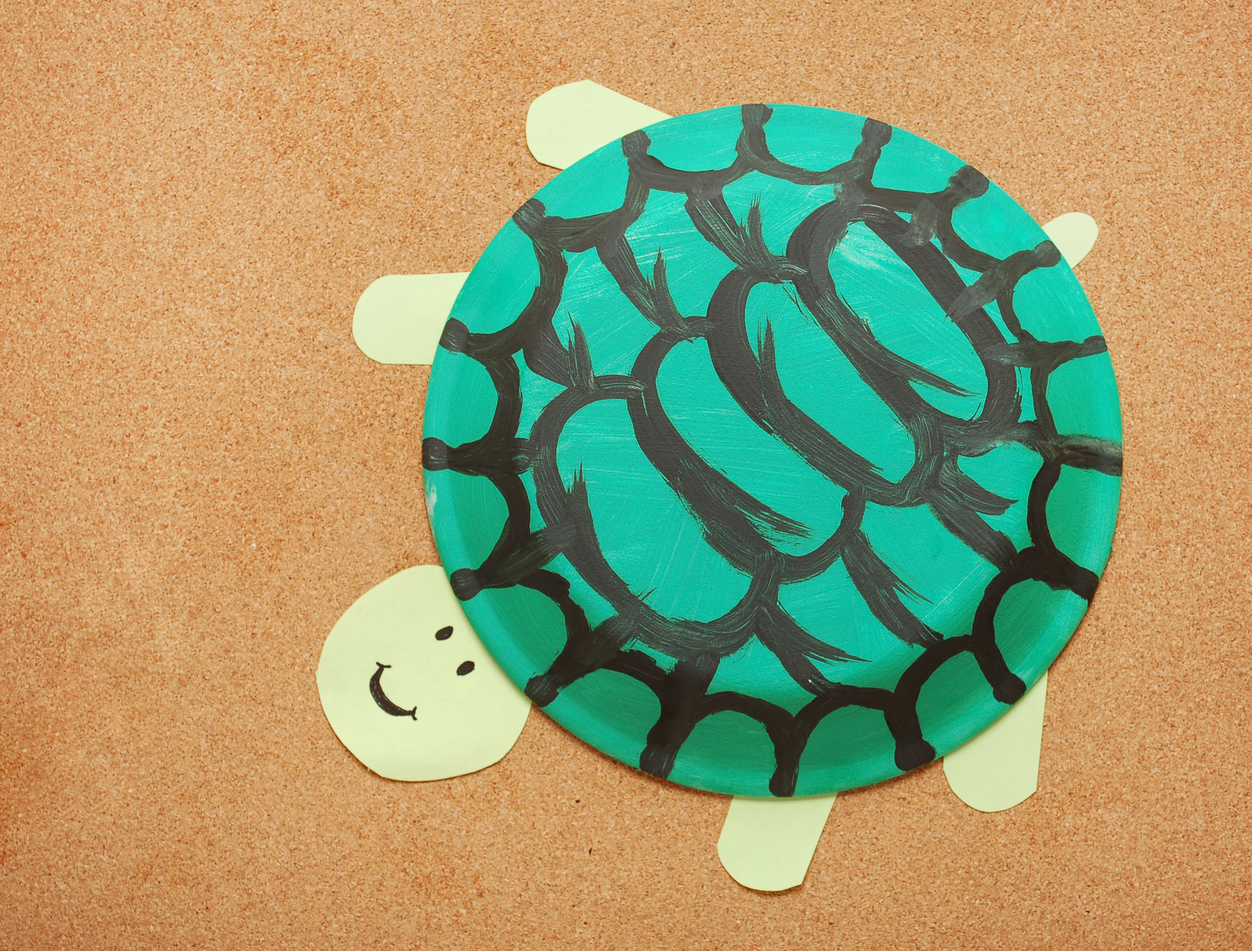 How To Make A Paper Plate Turtle 10 Steps With Pictures