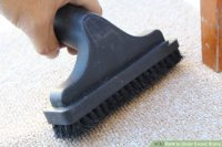 How to Clean Carpet Stains: 12 Steps (with Pictures) - wikiHow