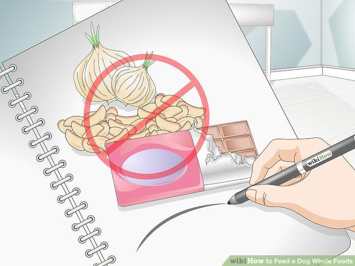 """Machen Sie eine Liste von """"NIE"""" Lebensmitteln."""