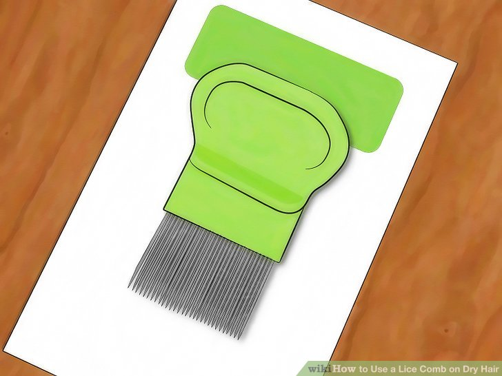 Buy a lice detection comb.
