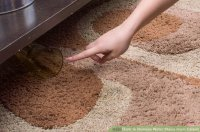 3 Ways to Remove Water Stains From Carpet
