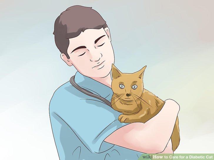 Lassen Sie sich regelmäßig von Ihrem Tierarzt untersuchen.
