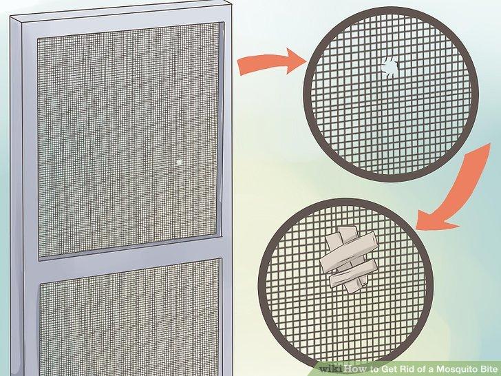 Repair holes or openings in your windows or door screens.
