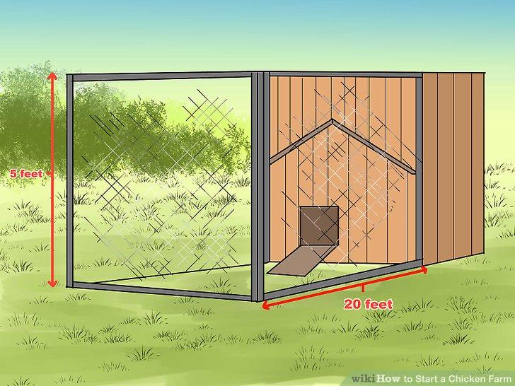 Zaun in einem 20 x 5 Fuß großen Außenbereich in der Nähe des Stalls mit Hühnerdraht und einem Hühnerzaun.