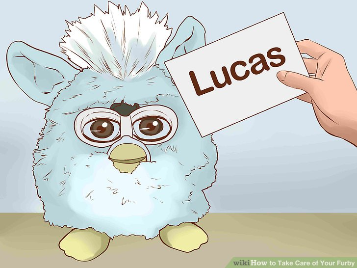 Name your Furby.