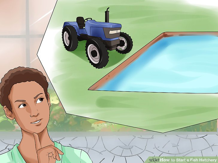 Erhöhen Sie eine Brutstätte auf Teichbasis.