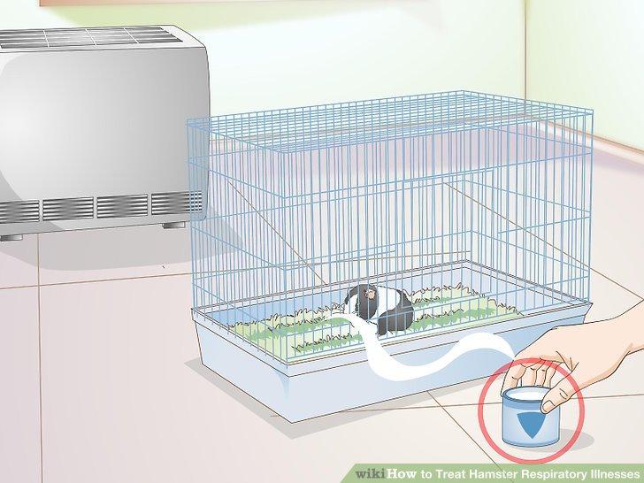 Machen Sie Ihren Hamsterkäfig bequem.