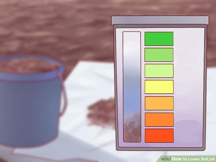 Verwenden Sie Ihr Test-Kit, um den genauen pH-Wert Ihres Bodens zu bestimmen.