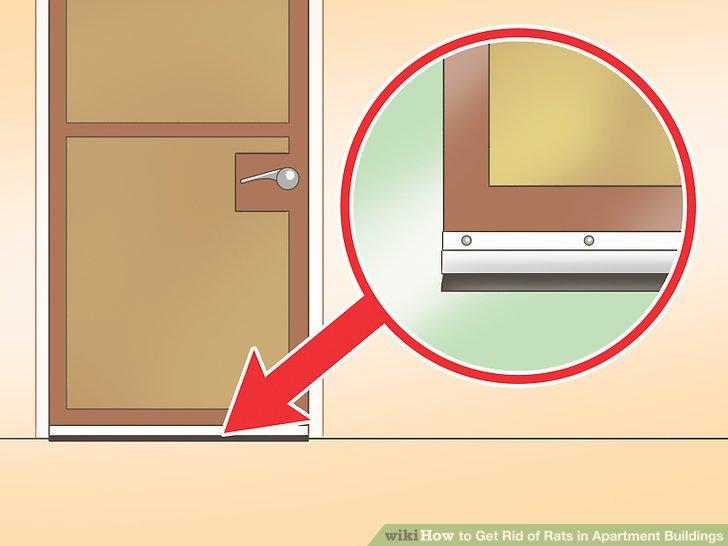 wie man ratten in apartmentgeb uden loswird wieistesgemacht. Black Bedroom Furniture Sets. Home Design Ideas