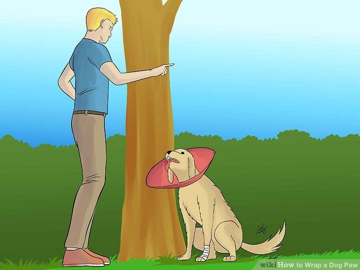 Halten Sie den Hund davon ab, an der Verpackung zu beißen.