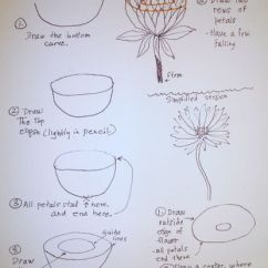 Lily Diagram Printable 2002 Volkswagen Jetta Radio Wiring How To Paint Lilies Pads And Frogs In Watercolor Image Titled Sketchawatlily