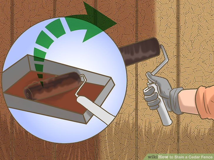Fill a tray and use a roller to apply an even coat of stain to your fence.