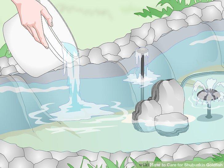 Decken Sie den Teichboden mit fischsicherem Sand ab.