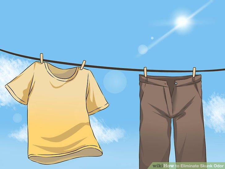 Eliminate Skunk Odor Step 15.jpg
