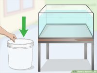 3 Ways to Siphon Water - wikiHow