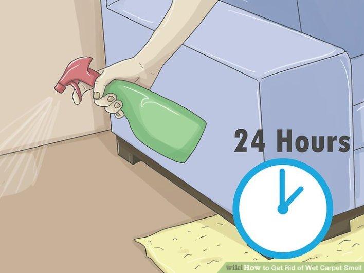 how to clean wet mildew carpet