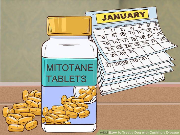 Beginnen Sie eine langfristige Mitotanbehandlung.