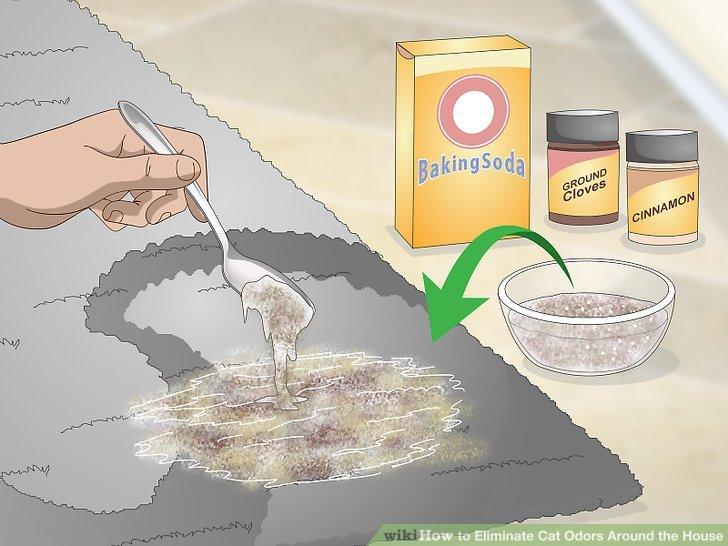 Apply an all natural air freshener.
