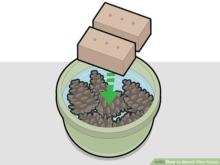 Put rocks or bricks on top of the pine cones to hold them down in the solution.