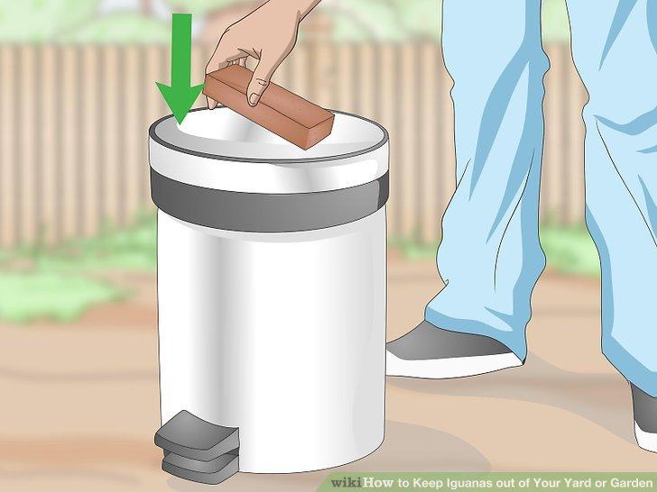 Mülldeckel richtig sichern oder beschweren.