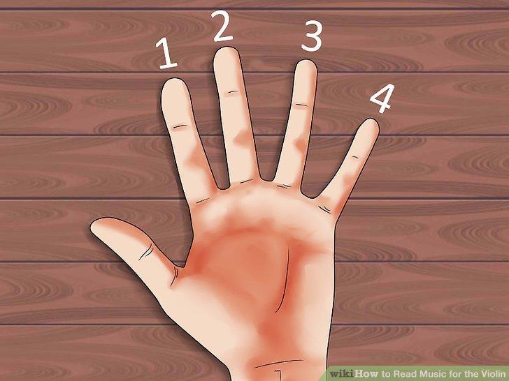 Ordnen Sie jedem Finger eine Zahl zu.
