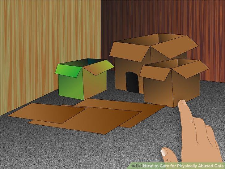 Make sure the room has plenty of cat-friendly hiding places.
