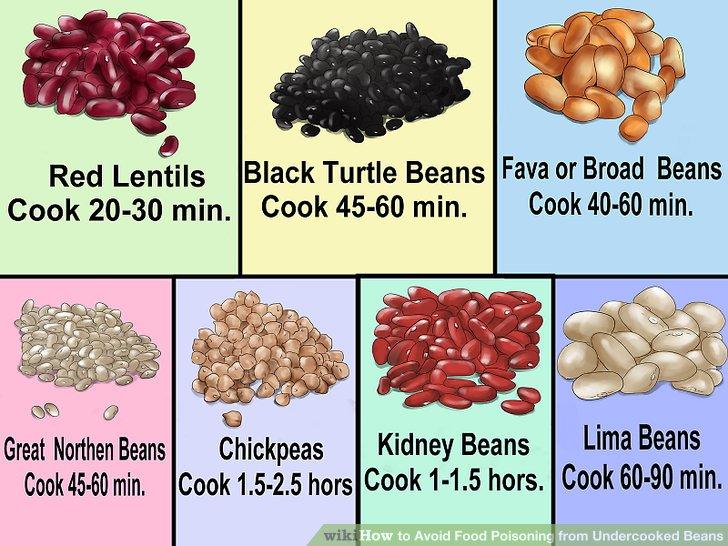Kidney Bean Lectin Toxicity - Kidney Failure Disease