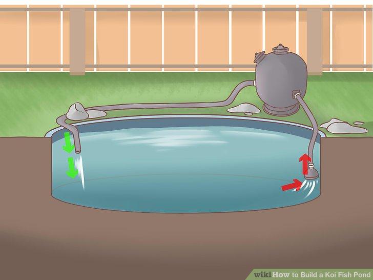 How Build Coy Pond