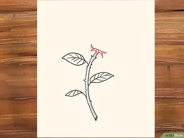 3 Cara untuk Menggambar Bunga Mawar - wikiHow