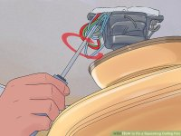 How To Fix Squeaky Ceiling Fan Motor | www.Gradschoolfairs.com