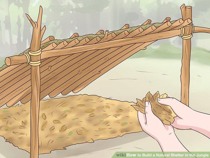 Legen Sie 3–4 cm (7,6–10,2 cm) toter, trockener Blätter auf den Boden.