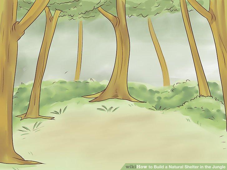 Finden Sie einen von Bäumen umgebenen Bereich, um den Wind zu blockieren.